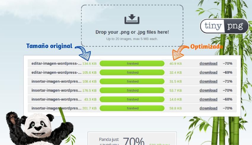Optimizar imagen con TinyPNG