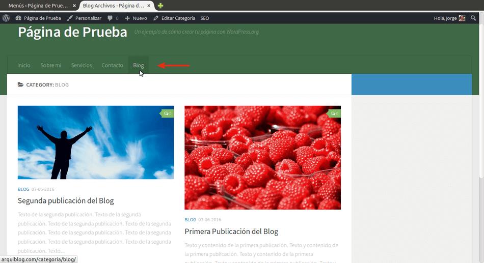 agregar blog a wordpress ver boton