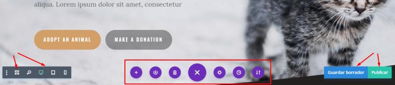 Plantilla Divi configuración de layout