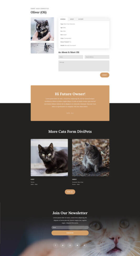 Tema Divi para Refugios de animales